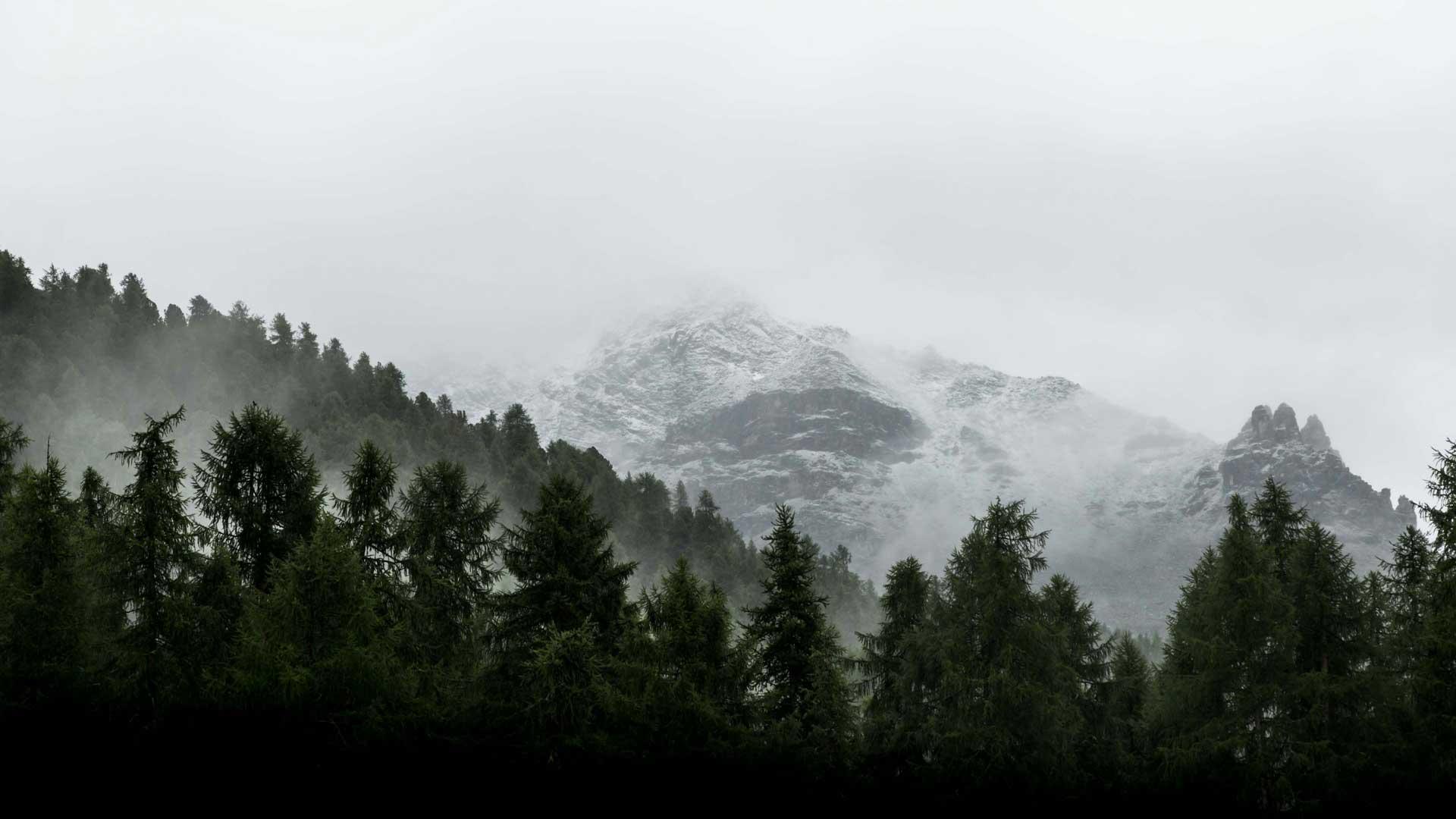 skog og fjell symboliserer utfordring og selvutvikling